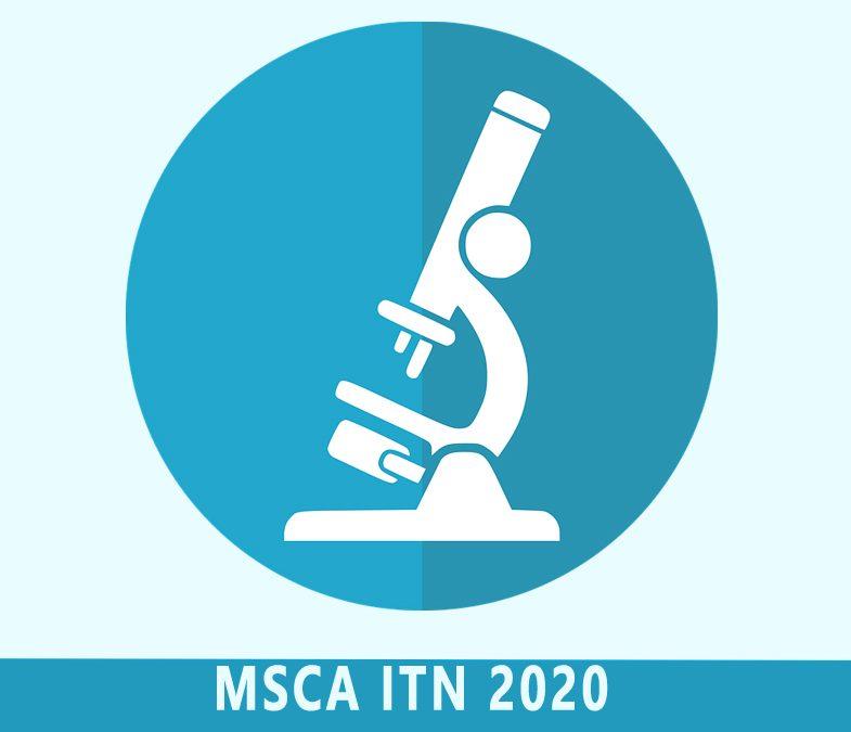 MSCA-ITN-2020 adelanta su convocatoria a septiembre de 2019